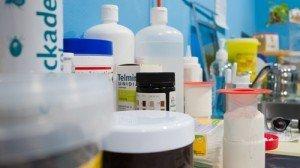 veterinario granada medicina preventiva Clínica Veterinaria Alcazaba